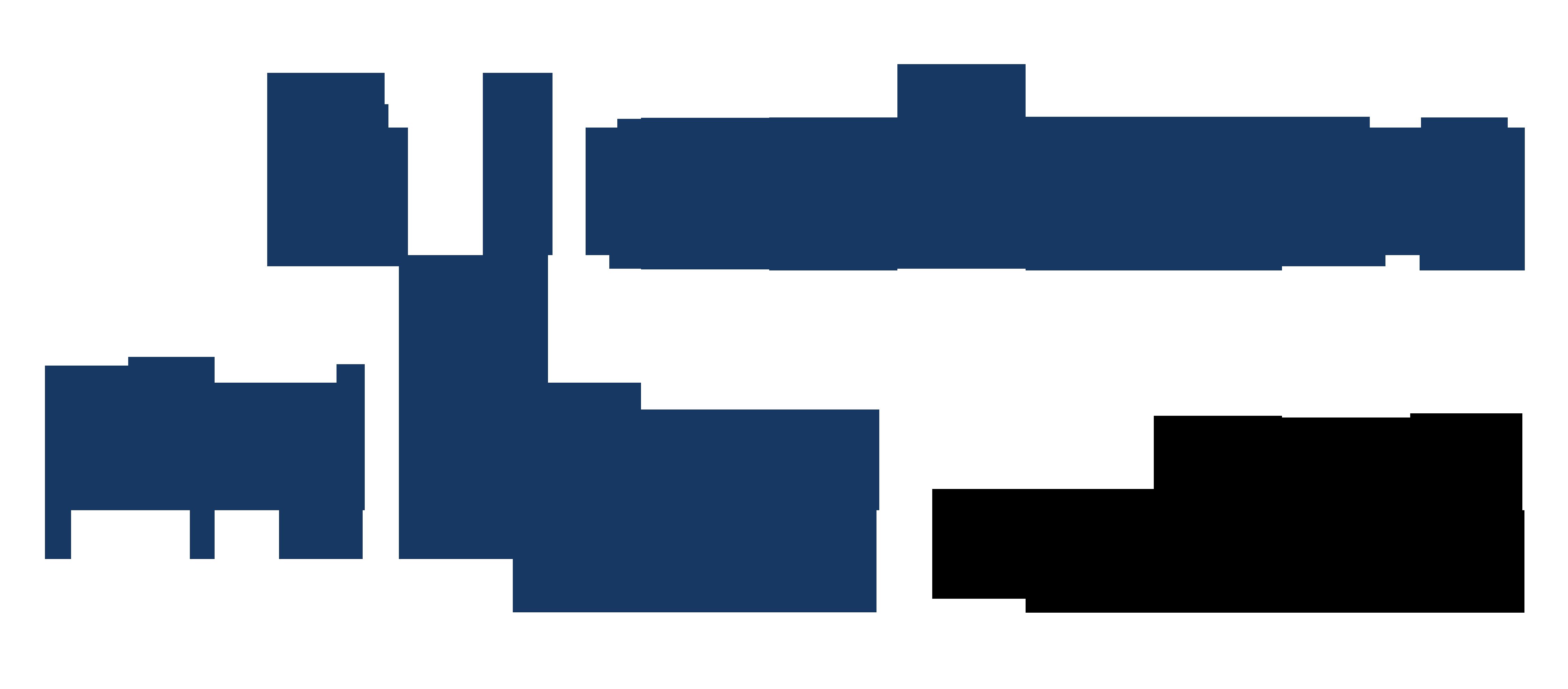Logo Philipp Riccabona IVo